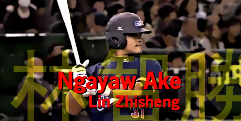 Lin Zhinsheng